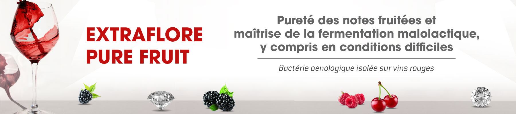 EXTRAFLORE PURE FRUIT